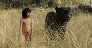 The Jungle Book MovieSpoon.com