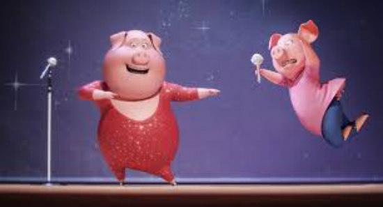 sing-pig